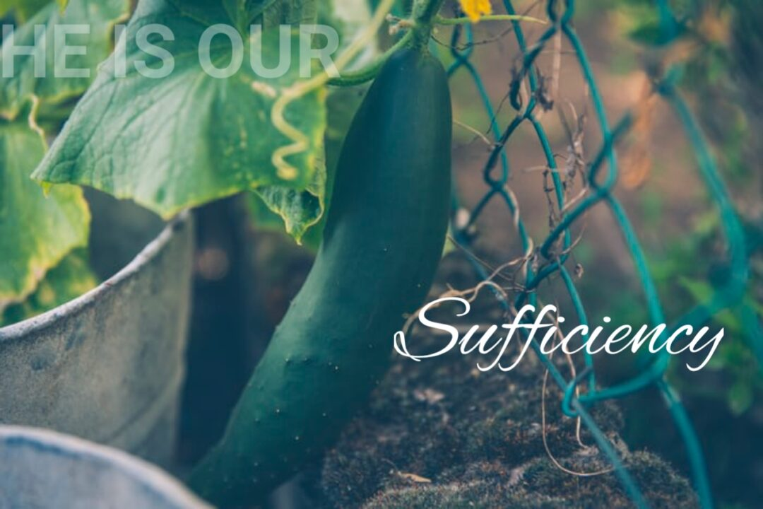 he is our sufficiency